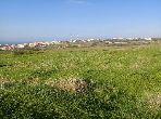 Terreno en venta en Sania. Superficie 13 696 m².