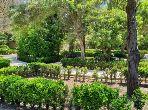 فيلا مساحتها 20000م²، شرفة، حديقة