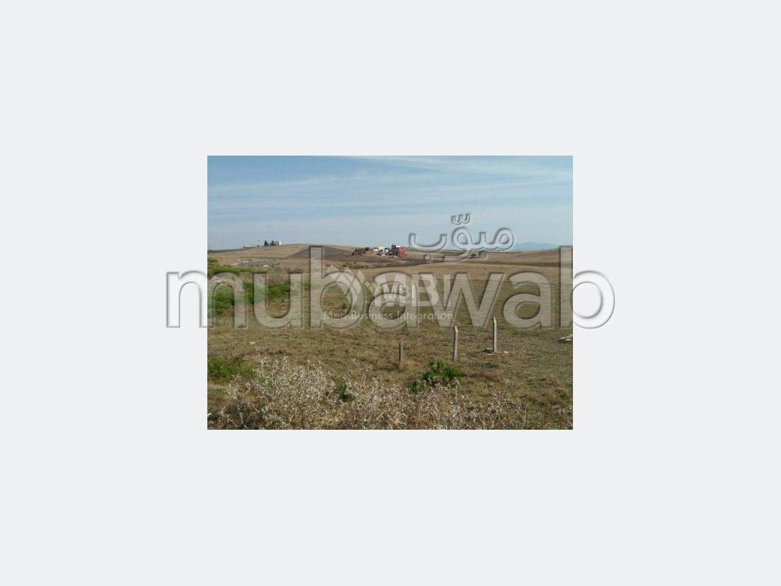 Terrain à vendre à sidi kankouch Tanger