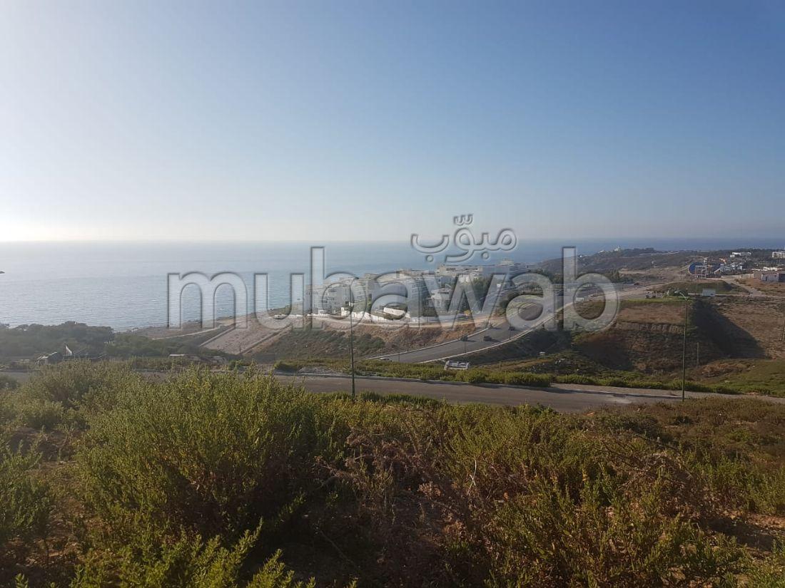 Compra-venta de terrenos en Malabata. Dimensión 294 m².