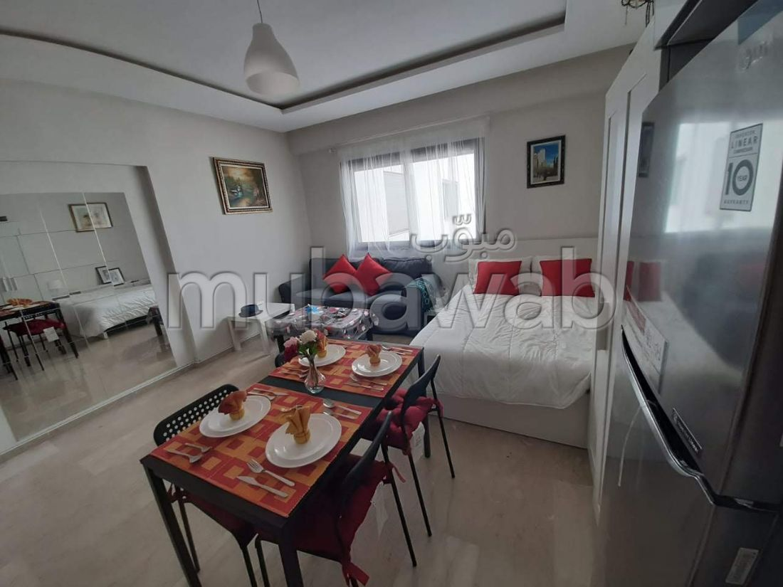 Great apartment for rent in Quartier du Parc. 1 lovely room. Well decorated.