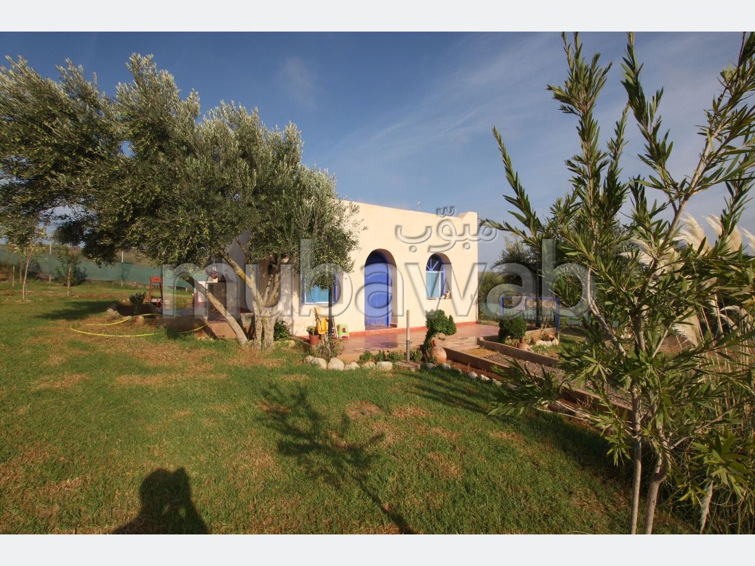 Maison 10198m², Terrasse, Jardin, Essaouira