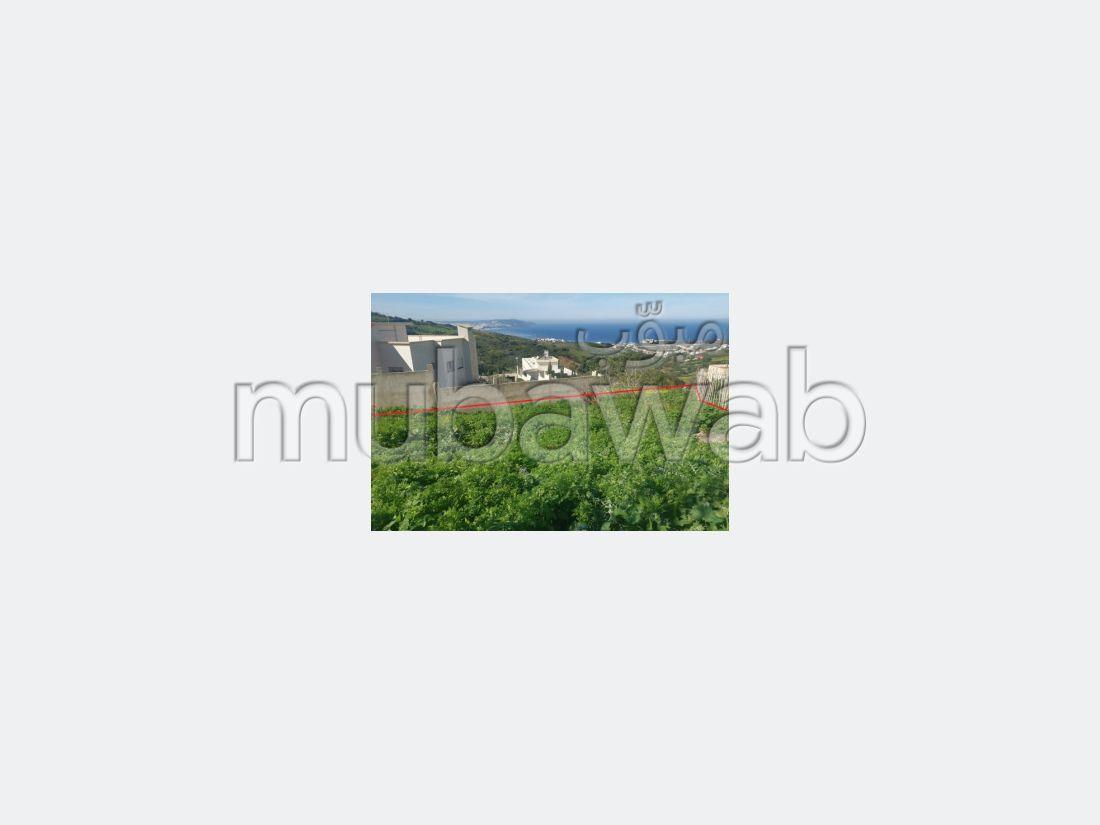 Quartier Nouinouich - VTM79-219 CI