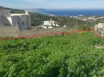 Land for sale in Tanja Balia. Area of 1 350 m². View facing the sea.