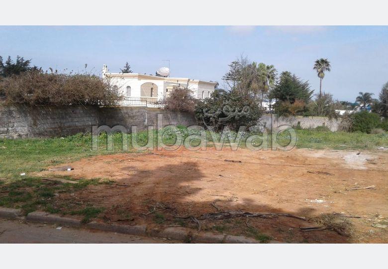 Terrain zone villa 3800 dh/ m²