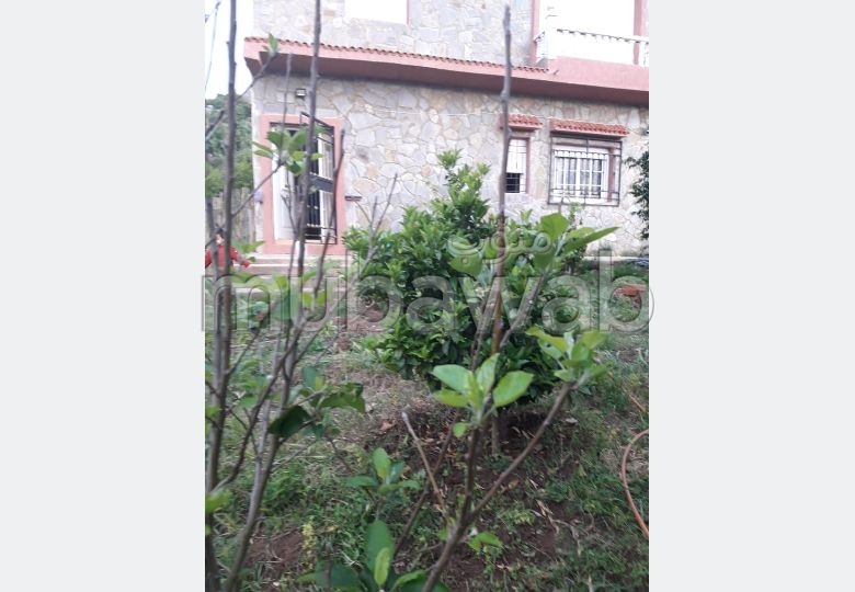 Find your house to buy. Small area 550.0 m². Carpark and garden.