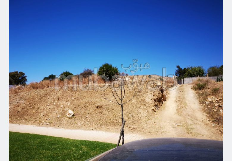 Terrain à vendre à Tanger. Surface totale 426.0 m².
