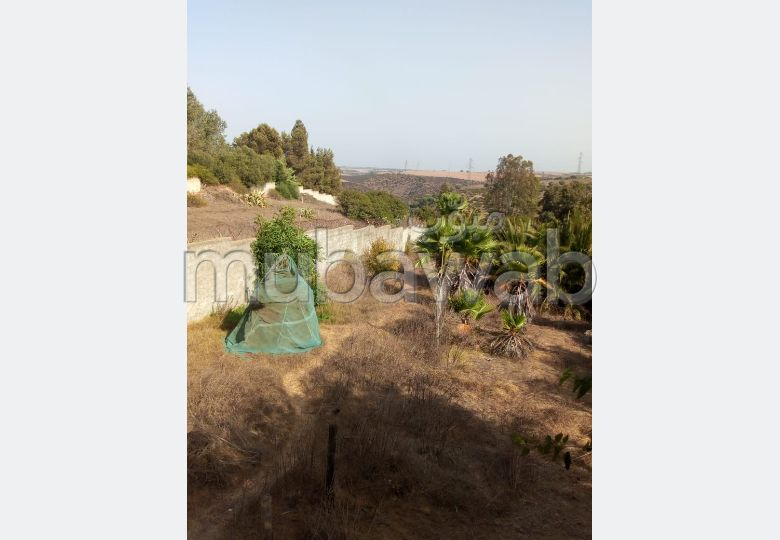 Achat de terrain à Rabat. Superficie 1500.0 m²