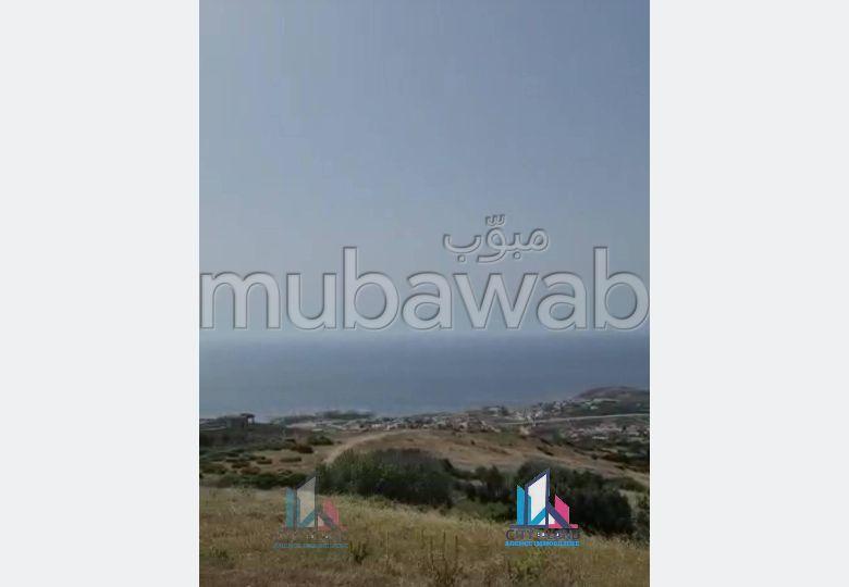 Terrain vue sur mer à Tanger