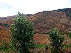 A vendre terrain agricole Bizerte Mateur 44 hectar