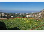بيع أرض بطنجة. المساحة الكلية 740.0 م².