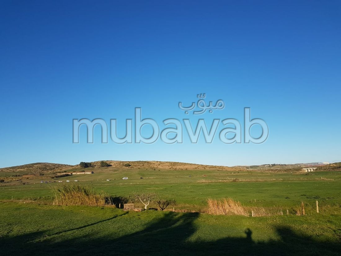 Beautiful land for sale. Dimension 150000 m².