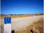 Terrain à vendre à Hammamet. Surface totale 525.0 m².