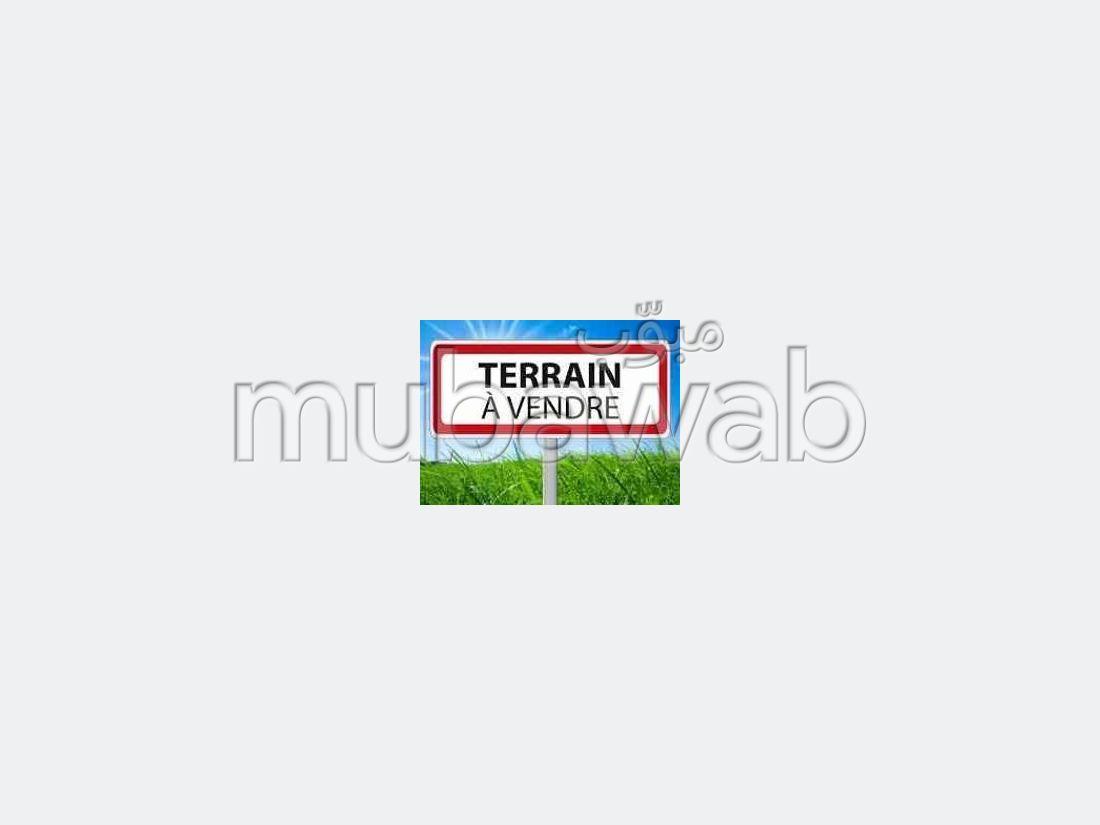 TERRAIN 508m² sur Boulevard 2 Facade