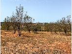 Venta de terreno en Souissi. Área total 1887.0 m².