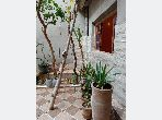 House for sale in Route de Ouarzazate. 3 Living room. Parking spaces and garden.