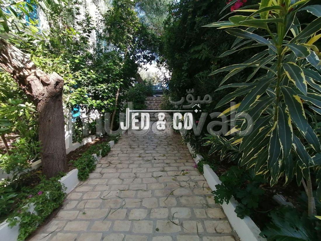 Un (S+2) jamais habité à Sidi Bou Said