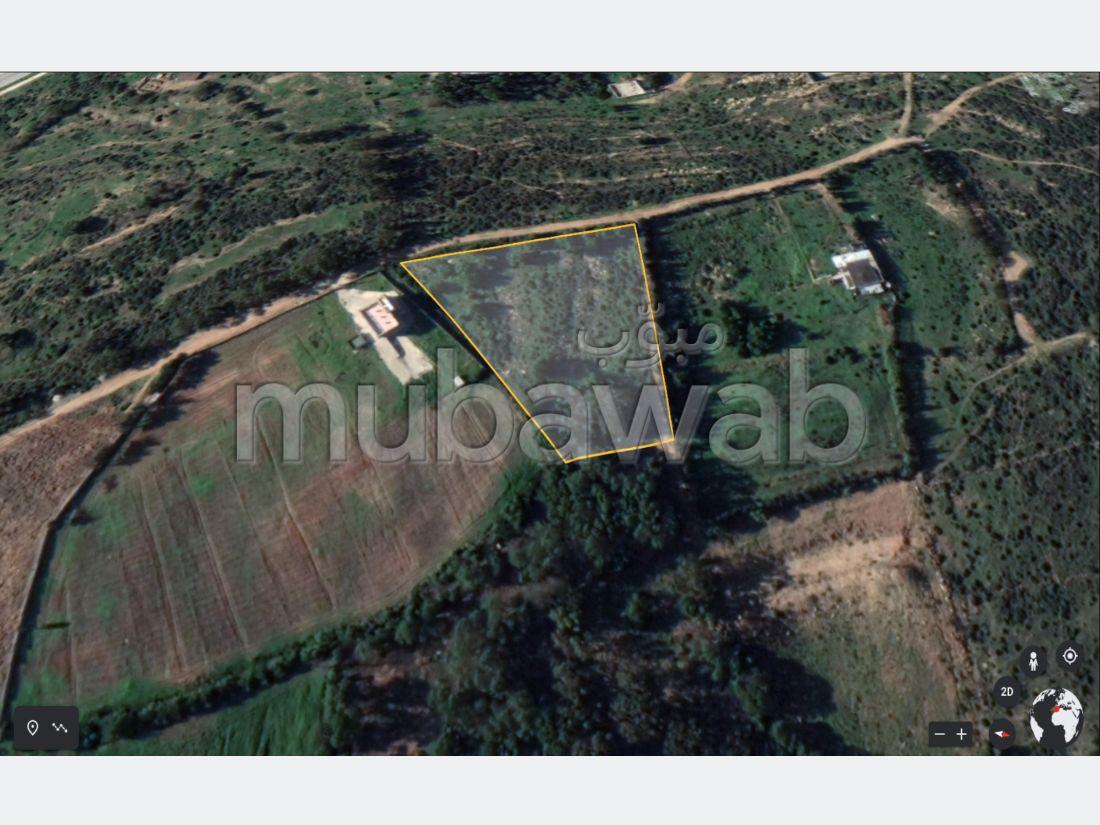 Venta de terreno. Gran superficie 4000 m².