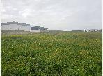 أرض ممتازة للبيع ب سالمية 2. المساحة 60000 م².