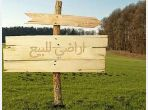 Land for purchase. Dimension 250000 m².