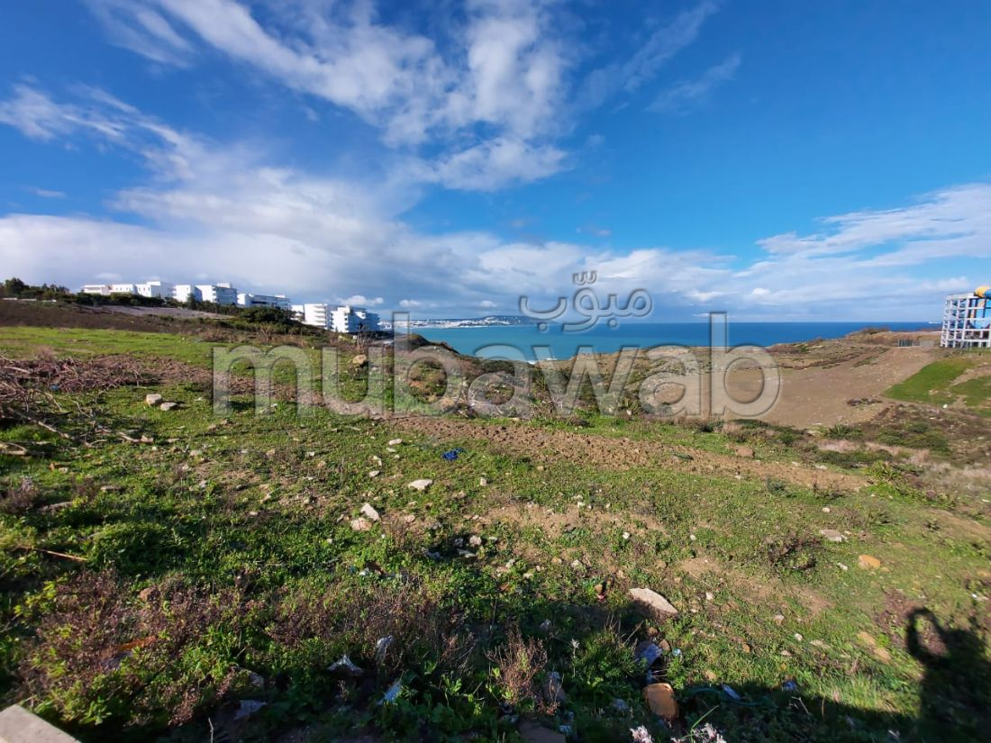 Beautiful land for sale in manar. Area of 26000 m².