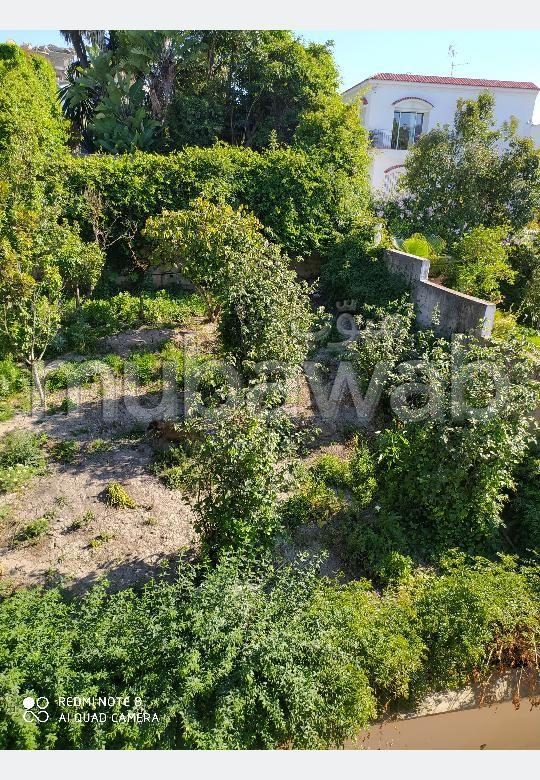 منزل فاخر للإيجار ب كليفورنيا. المساحة الإجمالية 1400 م². حديقة وشرفة.
