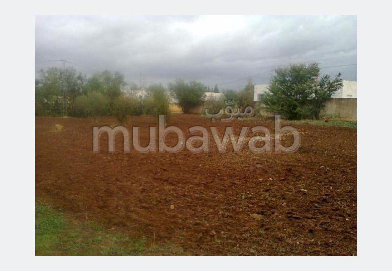 A #vendre un #Terrain à kalaa kebira vers kandar