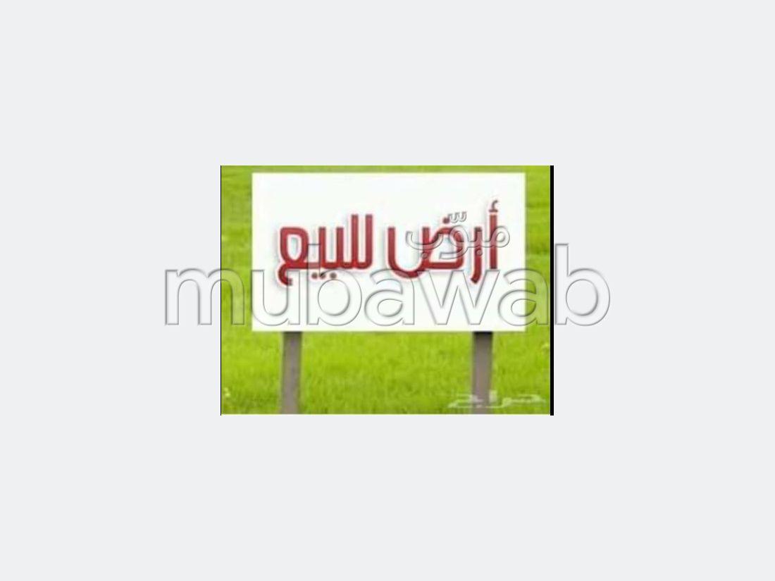 Land for sale in Bizerte Le Corniche. Surface area 477 m².