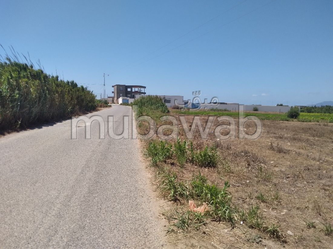 Terrain de 1000 m2 a vendre plage sidi daouad