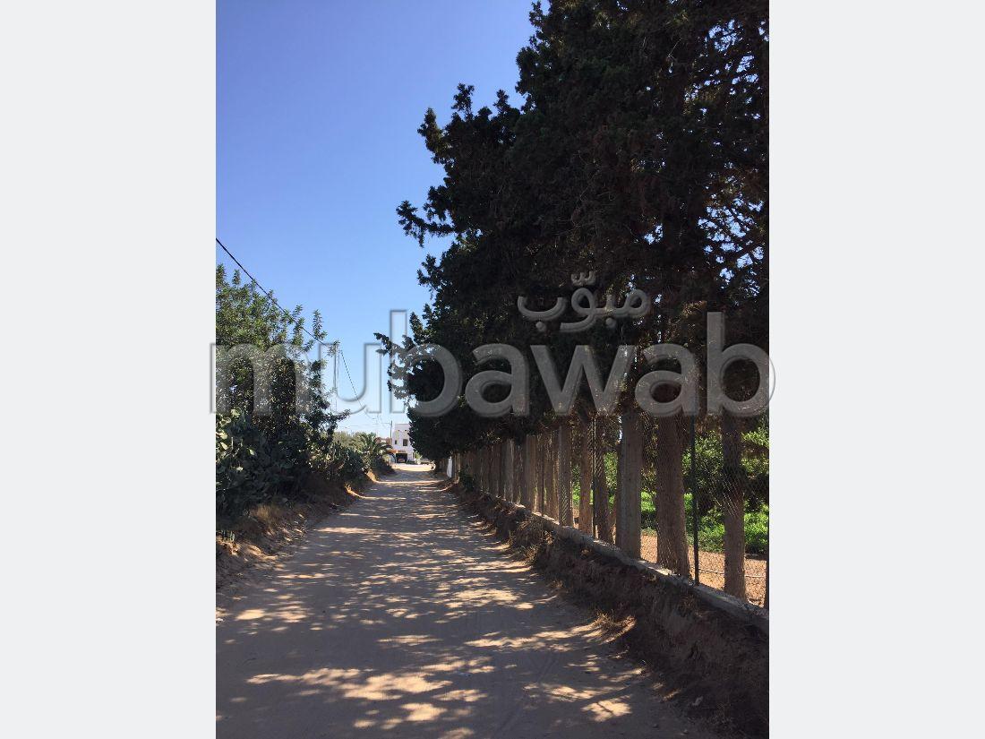 Terrain de 1500m² à Hammamet