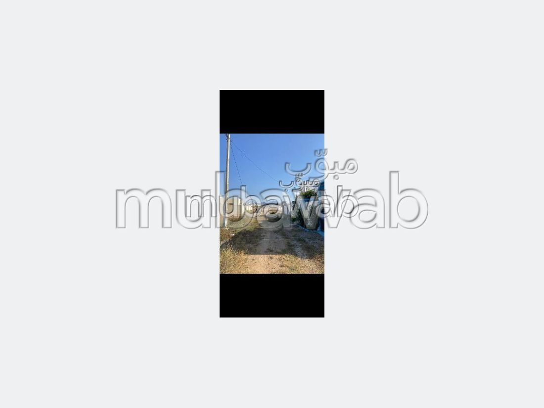 Land for sale. Area of 200 m².