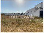 Land for purchase in Drissia. Dimension 200 m².