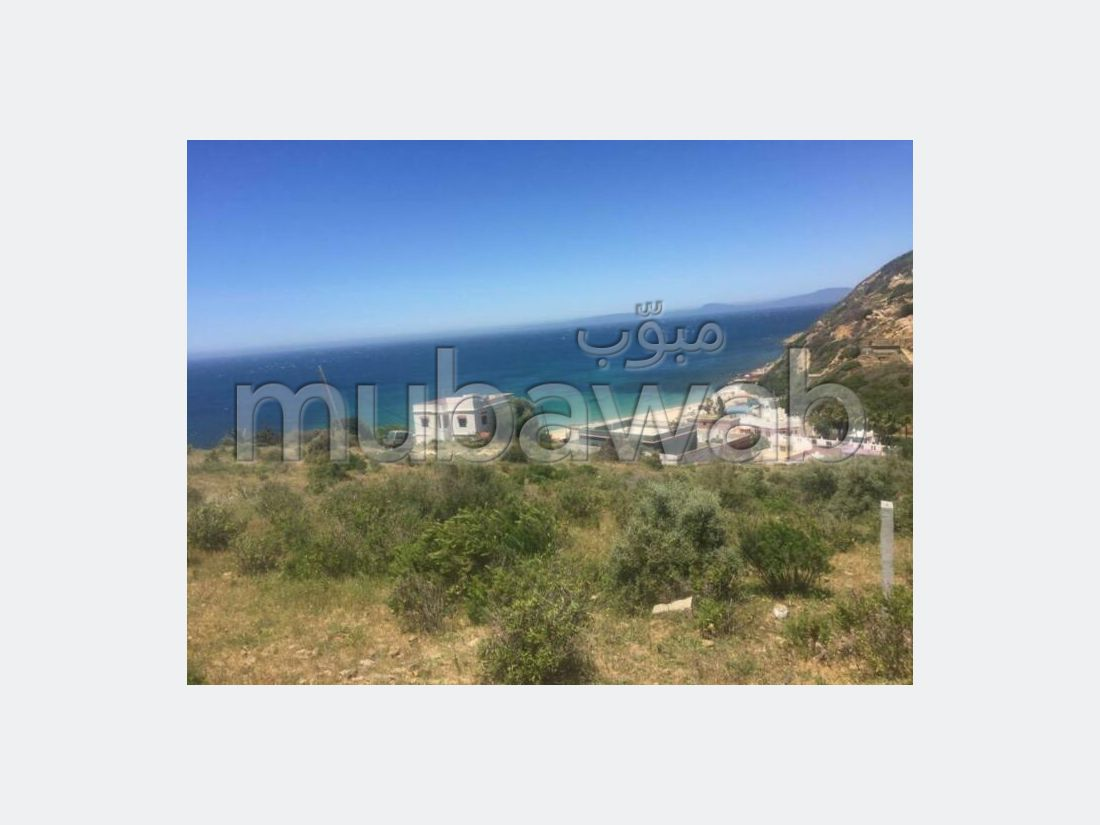 Land for sale in Centre. Large area 2300 m².