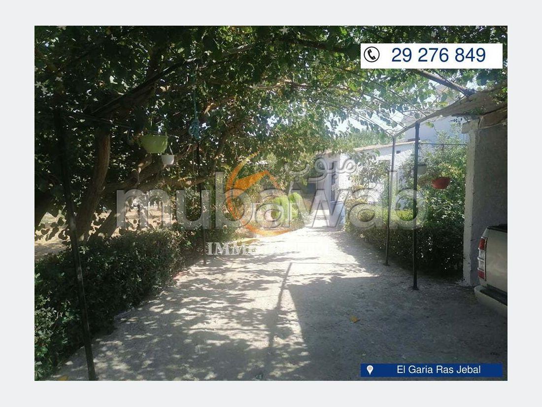 Trés belle maison à El Garia Ras jebel