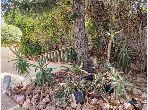 Réf: 00106 A Vendre une villa avec jardin à Soukra