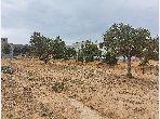 Terrain Sofien à Hammamet Nord
