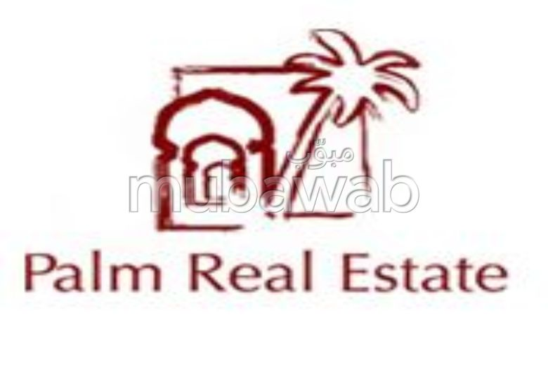 palm real estate