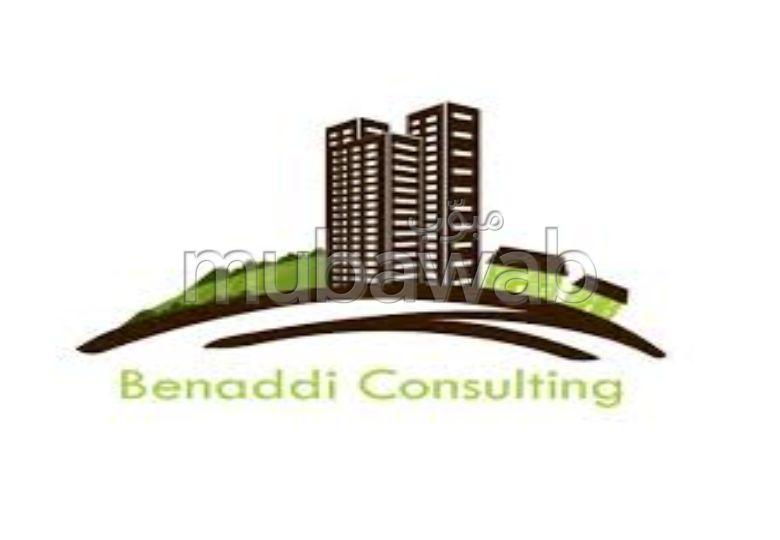 Benaddiconsulting