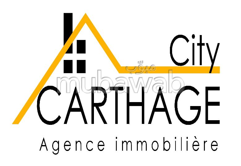 Carthage city
