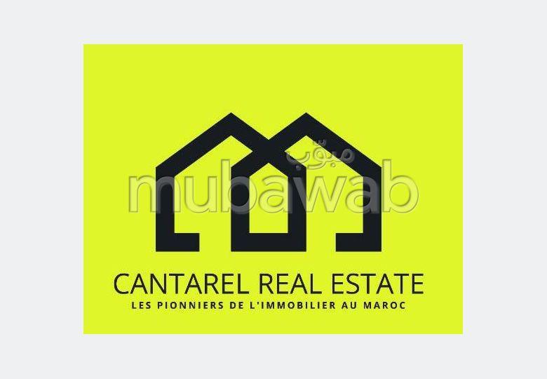 Cantarel Real Estate